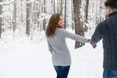 Portret szczęśliwa para w zima parku Fotografia Stock