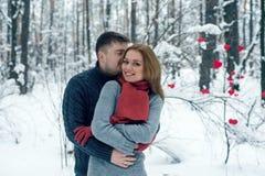 Portret szczęśliwa para w zima parku Zdjęcia Stock