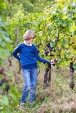Portret szczęśliwa uśmiechnięta chłopiec na jesień winogradu jardzie Zdjęcia Royalty Free
