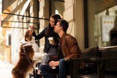 Portret szczęśliwy młody człowiek i kobieta spacer plenerowego z ich zwierzęciem domowym, karmimy je z coś wyśmienicie, siedzimy  fotografia royalty free