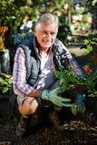 Portret szczęśliwy ogrodniczki przycupnięcie z doniczkowymi roślinami przy ogródem Fotografia Royalty Free