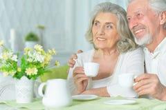 Portret szcz??liwa starsza para pije herbaty fotografia royalty free