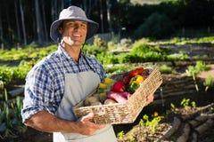 Portret trzyma kosz świezi warzywa szczęśliwy mężczyzna Obraz Stock
