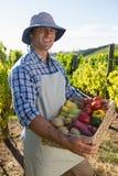 Portret trzyma kosz świezi warzywa szczęśliwy mężczyzna Zdjęcia Stock
