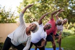 Portret uśmiechnięci starsi przyjaciele ćwiczy z rękami podnosić obraz royalty free