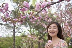 Portret uśmiechnięta młoda kobieta trzyma różowego okwitnięcie w parku w wiośnie pod kwitnie drzewem zdjęcia royalty free
