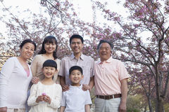 Portret uśmiechnięta pokoleniowa rodzina wśród czereśniowych drzew i cieszyć się parka w wiośnie zdjęcia stock