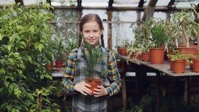Portret van aanbiddelijk klein meisje in schort die zich binnen serre, het houden van potteninstallatie, het glimlachen en het la stock footage
