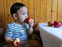 Portret van babyjongen die appelen eten Stock Afbeeldingen