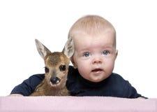 Portret van babyjongen met Damherten Fawn stock fotografie