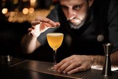 Portret van barman die illiciumbloem in alcoholcocktail toevoegt stock foto's