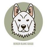 Portret van Berger Blanc Suisse Vector illustratie Royalty-vrije Stock Afbeeldingen