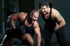 Portret van bodybuilders Stock Afbeeldingen