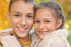 Portret van broer en zuster die in herfstpark koesteren stock foto
