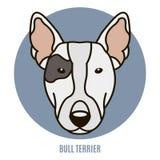 Portret van Bull terrier Vector illustratie Stock Foto