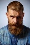 Portret van de brutale mens met baard en snor royalty-vrije stock afbeeldingen