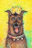 Portret van de hond van de Koningin` s verjaardag op een gele achtergrond Stock Foto