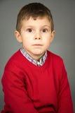 Portret van de jongen Stock Afbeeldingen