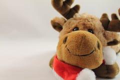 Portret van de leuke pluche van het Kerstmisrendier in studio Stock Foto's