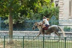 Portret van de mens met galopperend paard in grenskanaal in de stad stock afbeelding
