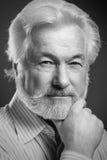 Portret van de oude mens met baard Stock Fotografie