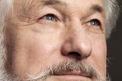 Portret van de oude mens met baard Stock Afbeeldingen