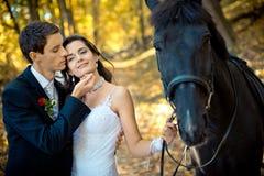 Portret van de sensuele jonggehuwden en het paard De knappe bruidegom zacht strijkt het gezicht van zijn aanbiddelijke bruid royalty-vrije stock afbeeldingen