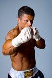 Portret van de vechter Royalty-vrije Stock Fotografie