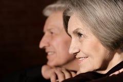 Portret van een gelukkig paar op middelbare leeftijd stock afbeelding
