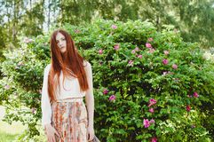 Portret van een gembermeisje in het park Stock Fotografie