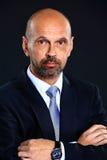Portret van een hogere zakenman stock foto's