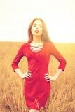 Portret van een jonge donkerbruine vrouw in rode kleding Stock Foto
