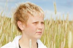 Portret van een jonge jongen in cornfield Stock Foto's