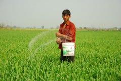 Portret van een jonge landbouwer Stock Afbeeldingen