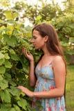 Portret van een jonge vrouwelijke tiener die zich onder de bladeren van een boom bevinden en een bos van druiven snuiven stock foto