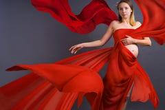 Portret van een jonge zwangere vrouw Stock Fotografie