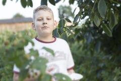Portret van een jongen Royalty-vrije Stock Fotografie