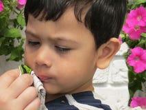 Portret van een jongen, de van wie hand van de moeder zijn mond met een zakdoek afveegt Royalty-vrije Stock Afbeelding