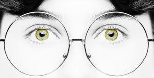 Portret van een jongen die oogglazen gele ogen draagt dicht, macrostudioschot stock afbeeldingen