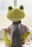 Portret van een kikker Royalty-vrije Stock Fotografie