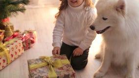 Portret van een kind met een hond dichtbij Kerstboom stock footage