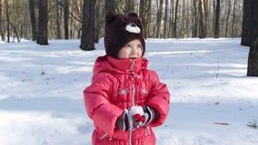 Portret van een klein meisje in het sneeuwbos stock footage