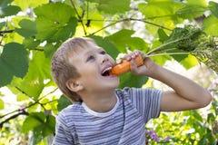 Portret van een leuke jongen, eet hij wortelen Royalty-vrije Stock Foto's