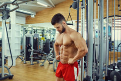 Portret van een mannelijke bodybuilder in gymnastiek stock afbeelding
