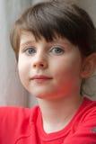 Portret van een meisje Royalty-vrije Stock Afbeelding