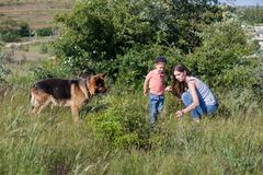 Portret van een moeder met een jonge zoon en een hond in het bos royalty-vrije stock foto