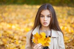 Portret van een mooi donkerbruin meisje, de herfstpark in openlucht stock afbeelding