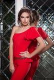 Portret van een mooi jong meisje in een rode kleding op een backgroun Stock Afbeelding
