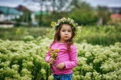 Portret van een mooi meisje in een kroon van madeliefjes royalty-vrije stock fotografie