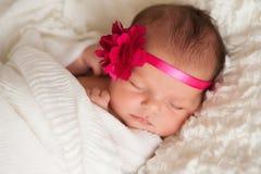Portret van een Mooi Pasgeboren Babymeisje royalty-vrije stock afbeelding